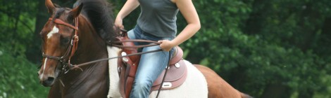 Holidays on horseback – Saddle Up This Season At Casa De Sierra Nevada