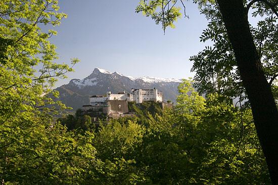 Salburg2