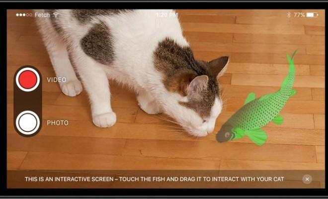 Fetch-CatQuest